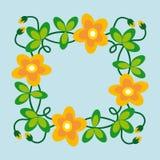 лето рамки цветков Стоковая Фотография