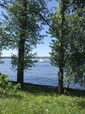 Лето & река Стоковое Фото
