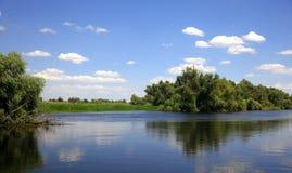 лето реки ландшафта горизонта дня большое Стоковое фото RF