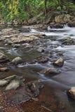 лето реки стоковая фотография