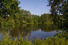 лето реки Стоковые Фото