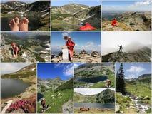 лето Румынии горы коллажа Стоковые Фотографии RF