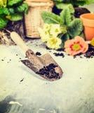 Лето садовничая с ветроуловителем почвы, бака цветков и зацветать Стоковая Фотография