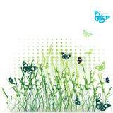 лето силуэта зеленого цвета травы Стоковое Фото