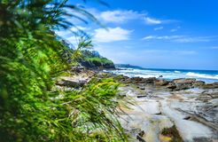 Лето скалистого пляжа стоковое изображение