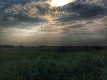Лето Солнце Стоковая Фотография