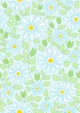 лето стоцвета предпосылки безшовное Стоковые Фотографии RF