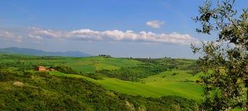 лето Тоскана панорамы Стоковое Изображение RF