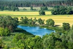 лето удя пруда семьи Стоковое Изображение RF