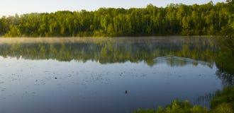 лето утра Минесоты Стоковые Фотографии RF