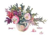 Лето цветет изолированная акварель Стоковая Фотография RF