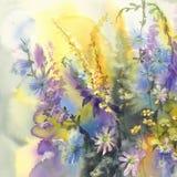 Лето цветет предпосылка акварели Стоковые Фотографии RF