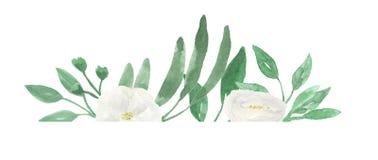Лето цветка свадьбы рамки Watercolour белой покрашенное рукой угловое Стоковые Изображения RF