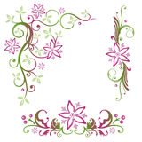 Лето, цветки, комплект Стоковая Фотография
