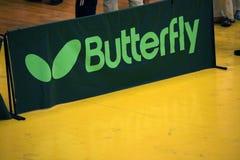 лето цветков бабочки знамени Стоковые Фотографии RF