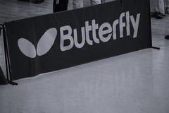 лето цветков бабочки знамени Стоковые Изображения RF