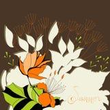 лето цветков предпосылки коричневое Стоковое Фото