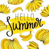Лето цитаты здравствуйте! Модная каллиграфия Стоковое фото RF