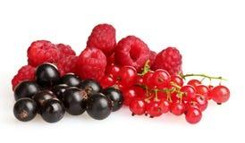 лето ягод вкусное свежее Стоковое фото RF