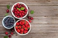 лето ягод свежее стоковые изображения