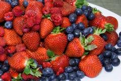 лето ягод смешанное Стоковые Изображения
