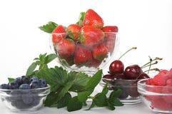 лето ягод Стоковая Фотография RF