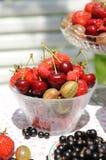 лето ягод Стоковые Фото