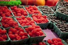 лето ягод Стоковая Фотография