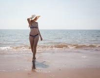 Лето Стоковое Изображение