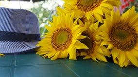 Лето стоковое фото