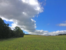 Лето Cloudscape Стоковые Изображения RF