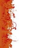 лето grunge знамени Стоковое Изображение RF