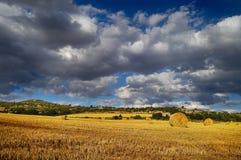 лето hayfield Стоковое Изображение RF