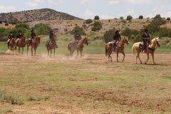 лето las golondrinas демонстрации equine fest Стоковая Фотография