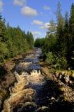 лето rapids Стоковая Фотография