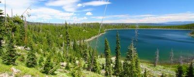 лето yellowstone пейзажа Стоковое фото RF