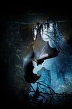 Летучая мышь в пещере Стоковое Изображение RF