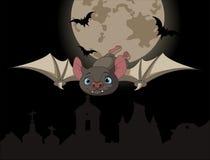Летучая мышь в полете Стоковые Изображения