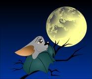 Летучая мышь на ветви дерева Стоковая Фотография RF