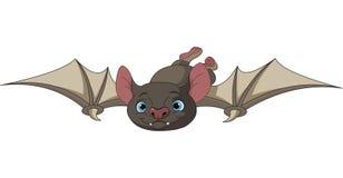 Летучая мышь хеллоуина в полете Стоковые Фото