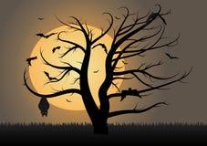 Летучие мыши летая и вися в силуэте дерева иллюстрация штока