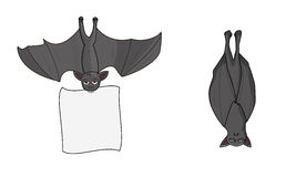 летучие мыши Стоковое Изображение RF