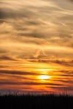 Летящие птицы на драматической предпосылке захода солнца Стоковые Фотографии RF