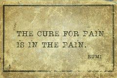 Лечение для боли Rumi стоковое изображение rf