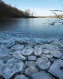 Лед блинчика на замороженном озере Стоковые Фото