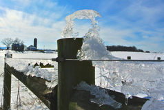 Лед зимы Стоковые Фото