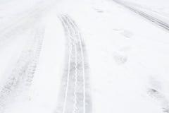 Ледистая дорога стоковые фото