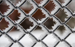 Ледистая решетка металла Стоковая Фотография