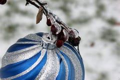 Ледистые ягоды на орнаменте Стоковая Фотография RF