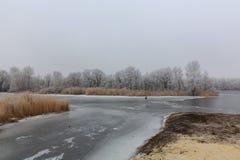 Лед на озере холодная зима помеец травы Стоковое Изображение RF
